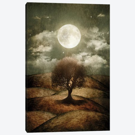 Once Upon A Time... The Lone Tree Canvas Print #VGO10} by Viviana Gonzalez Canvas Wall Art