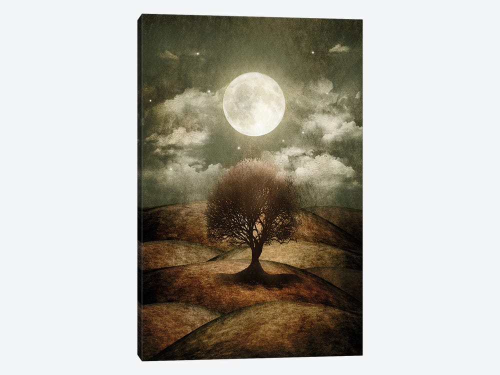 Once Upon A Time... The Lone Tree by Viviana Gonzalez 1-piece Canvas Artwork