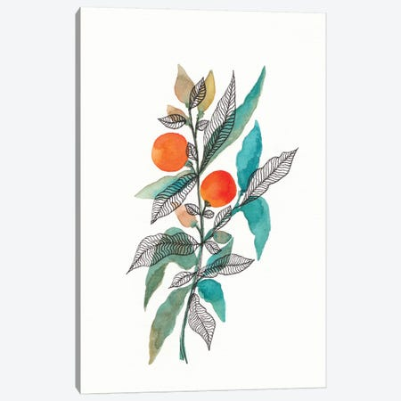 Watercolor + Ink Leaves III Canvas Print #VGO138} by Viviana Gonzalez Canvas Art Print