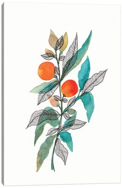 Watercolor + Ink Leaves III Canvas Art Print