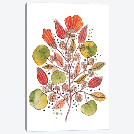 Modern Watercolor Botanicals V Canvas Print #VGO178} by Viviana Gonzalez Canvas Print