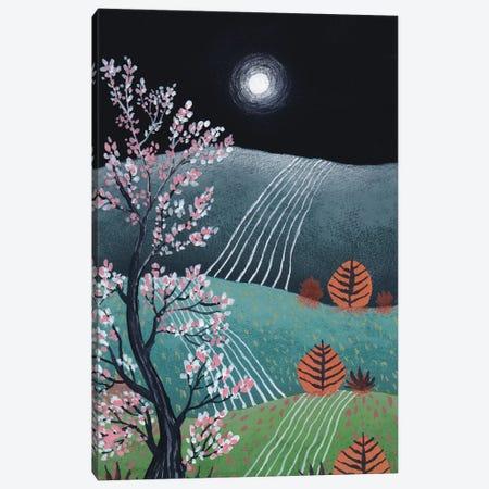 Midnight Landscape VI Canvas Print #VGO204} by Viviana Gonzalez Canvas Wall Art