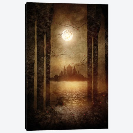 The Moon Is Singing Canvas Print #VGO24} by Viviana Gonzalez Canvas Art