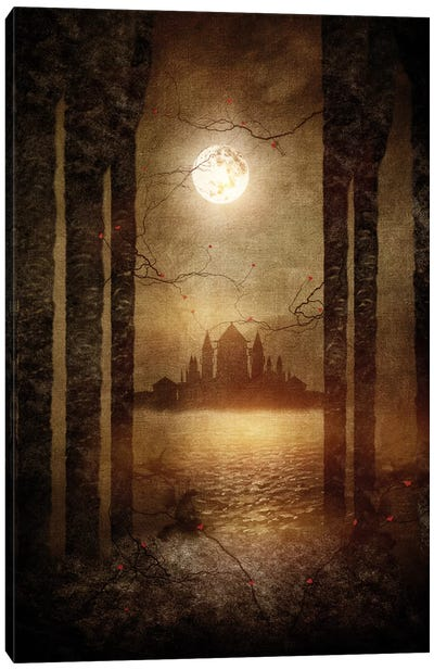 The Moon Is Singing Canvas Print #VGO24