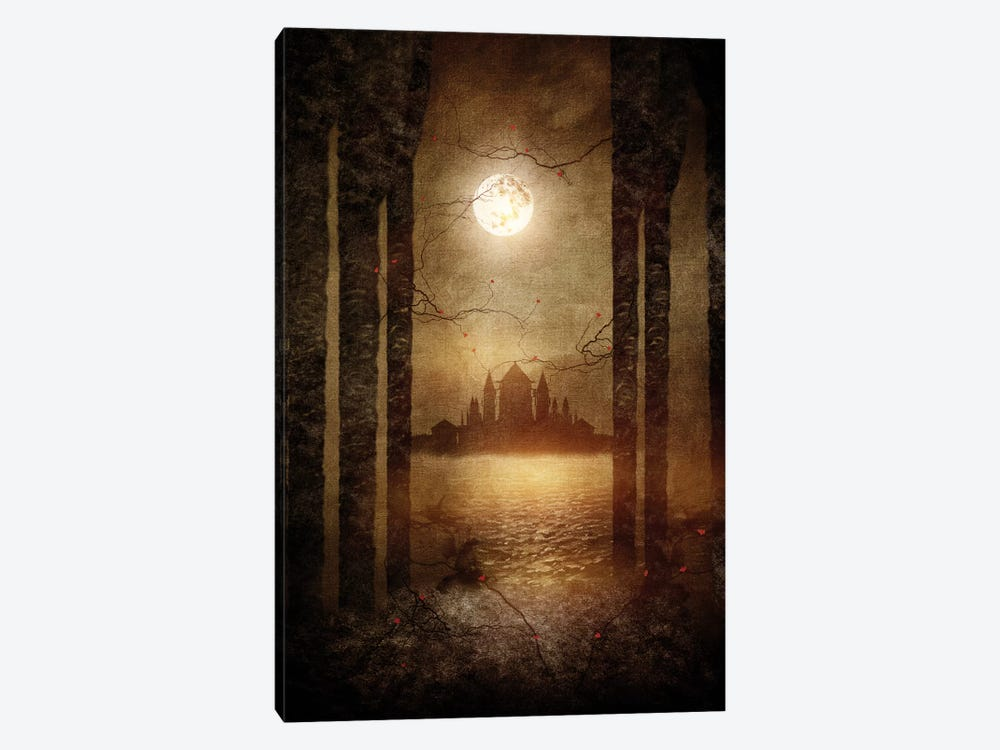 The Moon Is Singing by Viviana Gonzalez 1-piece Canvas Print