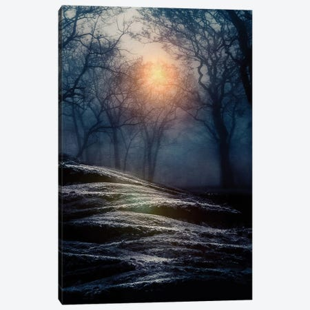 From Small Beginnings And Big Endings I Canvas Print #VGO2} by Viviana Gonzalez Canvas Art