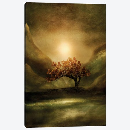 Advice From A Tree Canvas Print #VGO34} by Viviana Gonzalez Art Print
