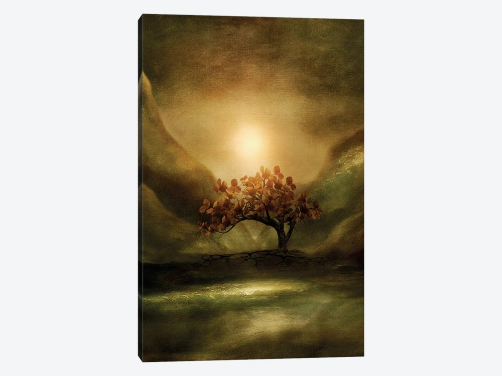Advice From A Tree by Viviana Gonzalez 1-piece Canvas Art