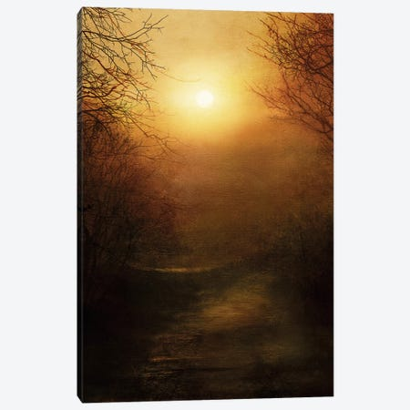 April Ethereal Canvas Print #VGO35} by Viviana Gonzalez Canvas Art Print