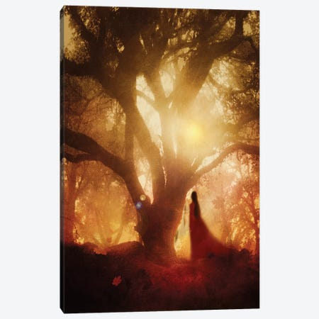 Autumn Song Canvas Print #VGO36} by Viviana Gonzalez Canvas Print