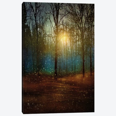 Beautiful Winter Canvas Print #VGO37} by Viviana Gonzalez Canvas Print