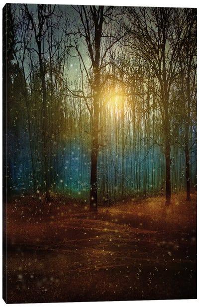 Beautiful Winter Canvas Art Print