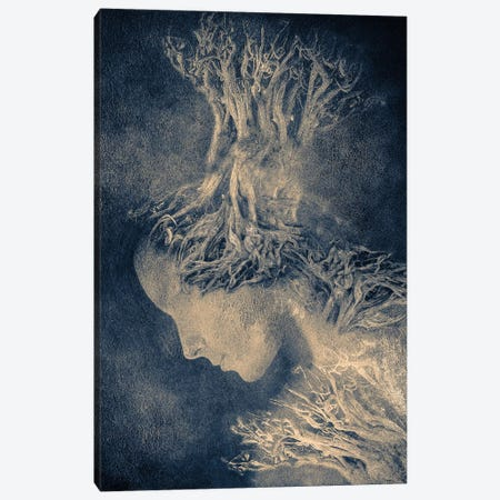 Dark Portrait I Canvas Print #VGO40} by Viviana Gonzalez Canvas Print