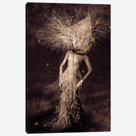Dark Portrait In Autumn Canvas Print #VGO41} by Viviana Gonzalez Art Print