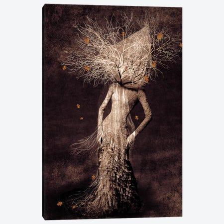 Dark Portrait In Autumn Canvas Print #VGO41} by Viviana Gonzalez Art Print