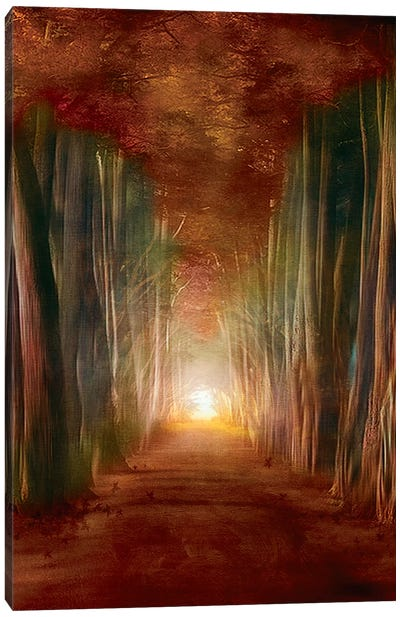Dreams Come True I Canvas Art Print