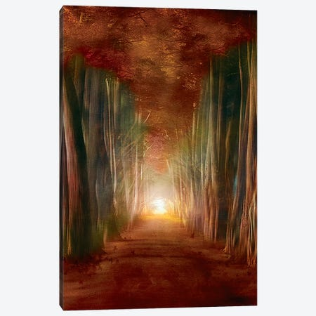 Dreams Come True I Canvas Print #VGO43} by Viviana Gonzalez Canvas Print