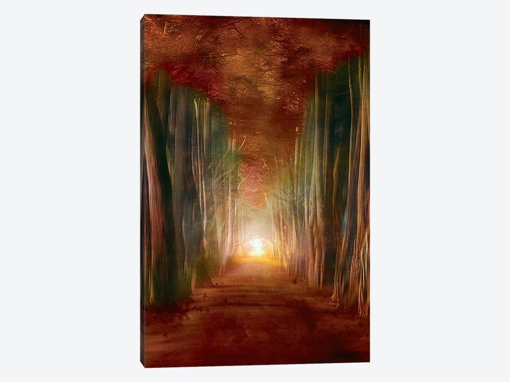 Dreams Come True I by Viviana Gonzalez 1-piece Canvas Art