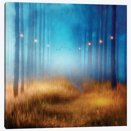 Blue Melody… Canvas Print #VGO47} by Viviana Gonzalez Canvas Artwork