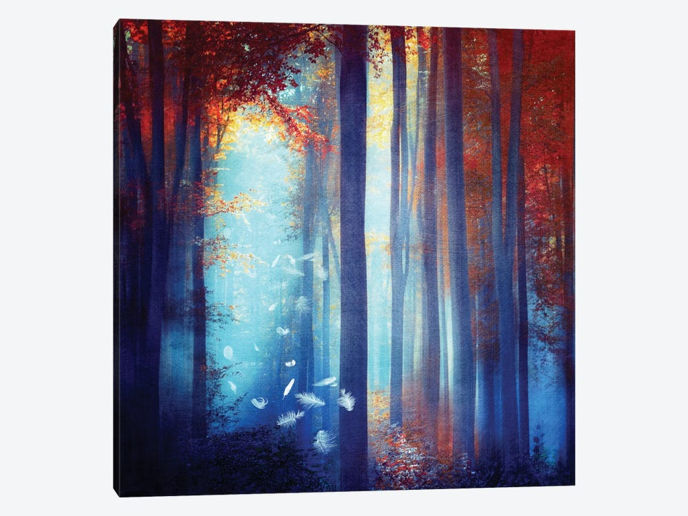 Dreams In Blue by Viviana Gonzalez 1-piece Canvas Art