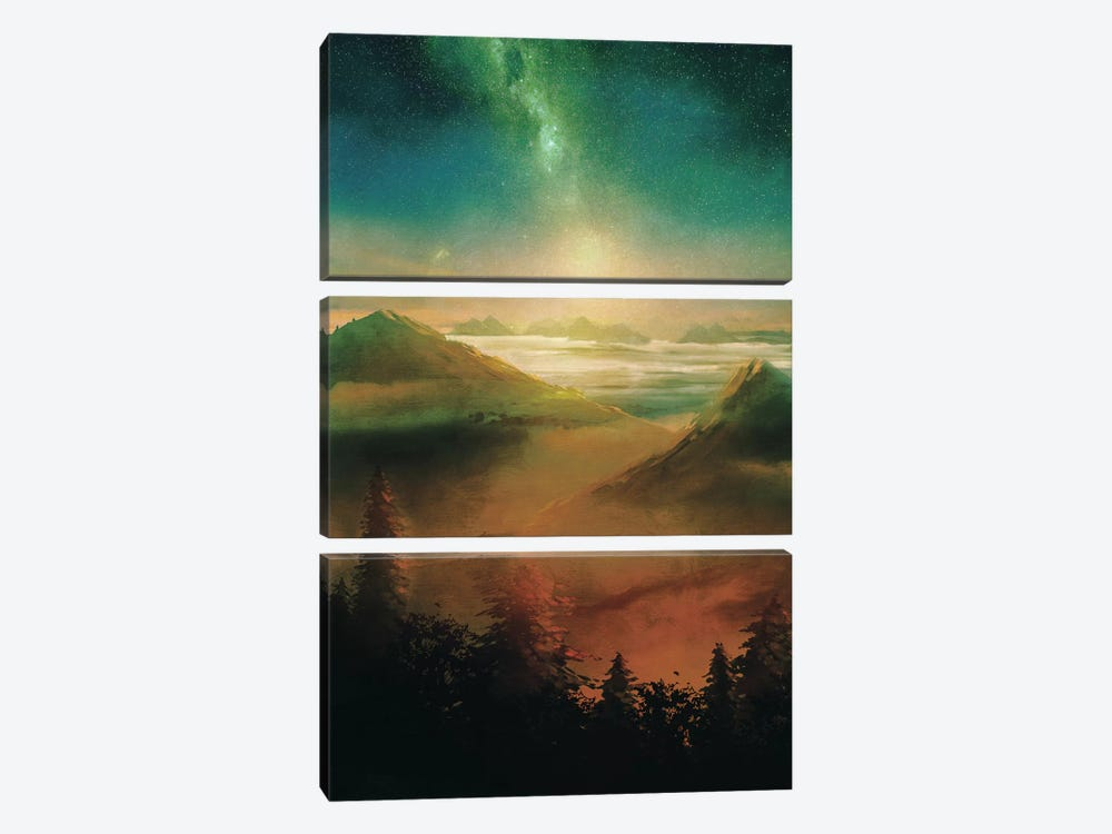 Into The Trees by Viviana Gonzalez 3-piece Canvas Print