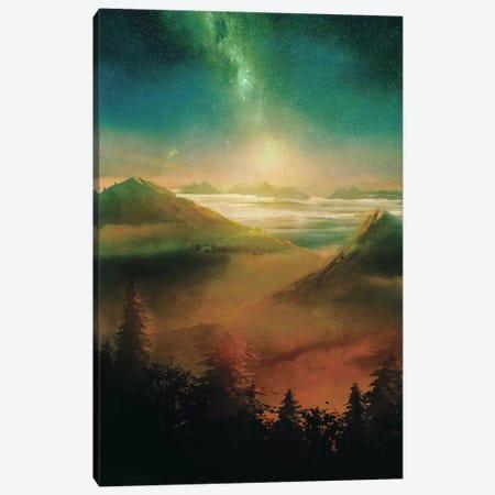 Into The Trees Canvas Print #VGO4} by Viviana Gonzalez Canvas Art Print