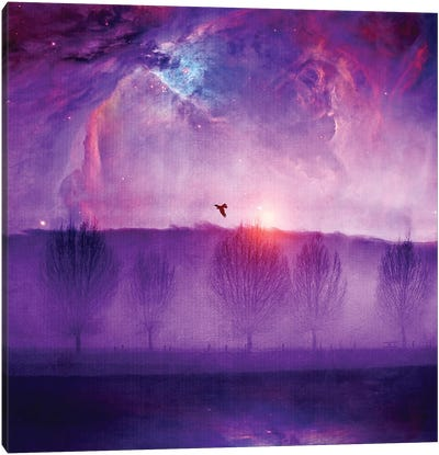 Orion Nebula II Canvas Art Print