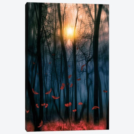 Red Feather Dance Canvas Print #VGO55} by Viviana Gonzalez Art Print
