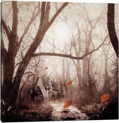 Secret Place Canvas Print #VGO58