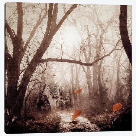 Secret Place Canvas Print #VGO58} by Viviana Gonzalez Canvas Wall Art
