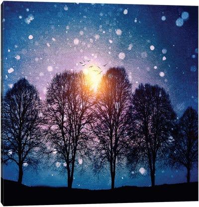 Sounds Of Winter Canvas Art Print