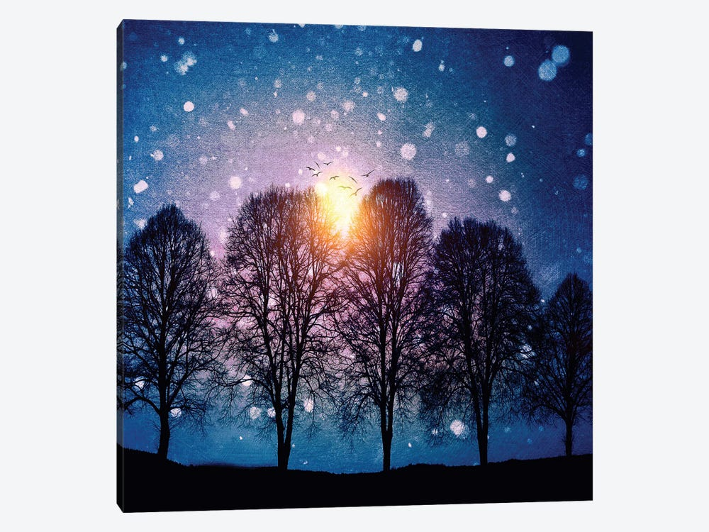Sounds Of Winter by Viviana Gonzalez 1-piece Art Print