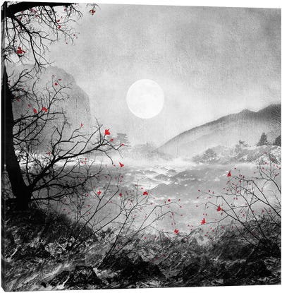 The Red Sounds and Poems, Chapter II Canvas Art Print