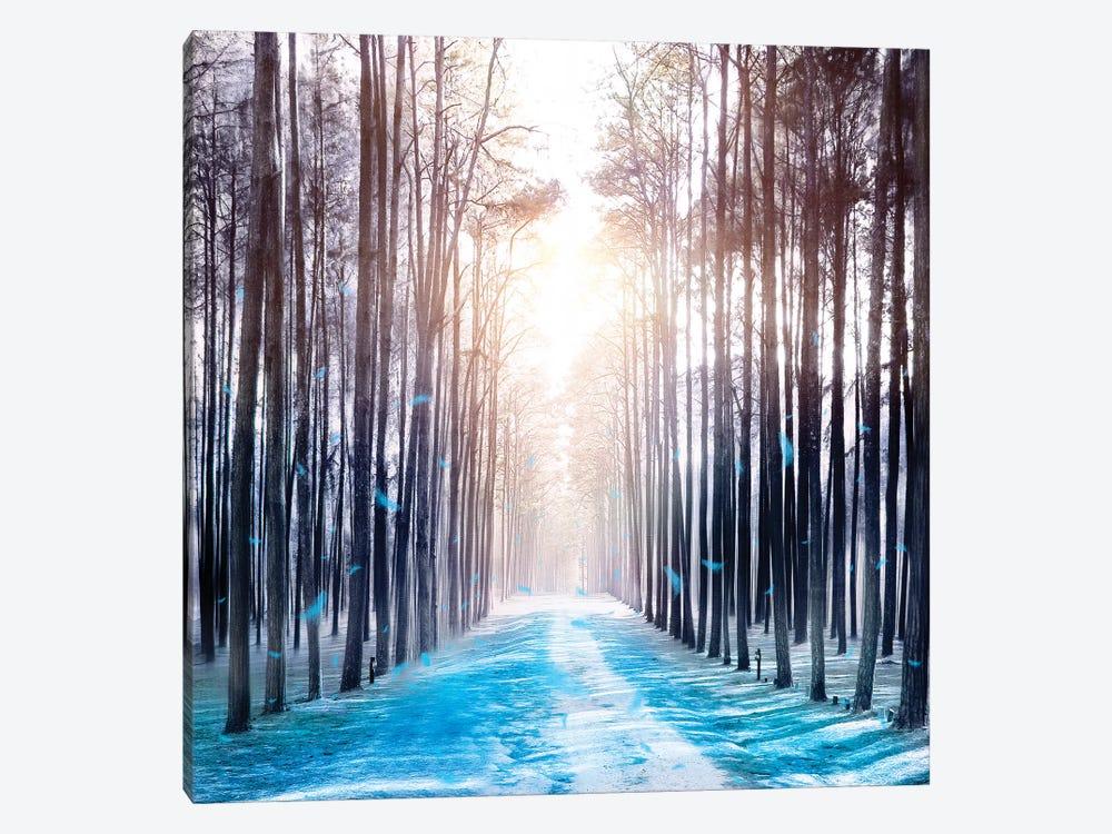 Feather Dance In Winter by Viviana Gonzalez 1-piece Canvas Artwork