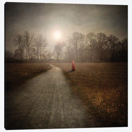 I Make My Own Path Canvas Print #VGO69} by Viviana Gonzalez Canvas Print