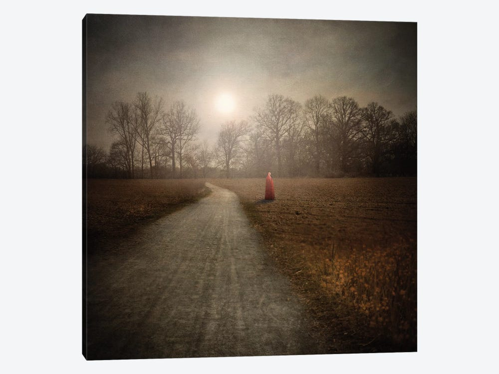 I Make My Own Path by Viviana Gonzalez 1-piece Canvas Art