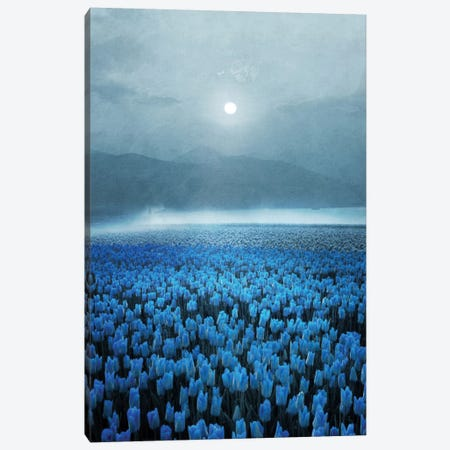 Magical Tulips Canvas Print #VGO7} by Viviana Gonzalez Canvas Art Print