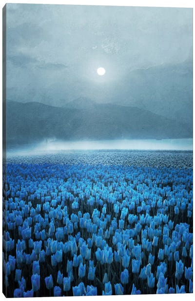 Magical Tulips Canvas Art Print