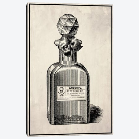 Poison Perfume Canvas Print #VHI5} by 5by5collective Canvas Artwork