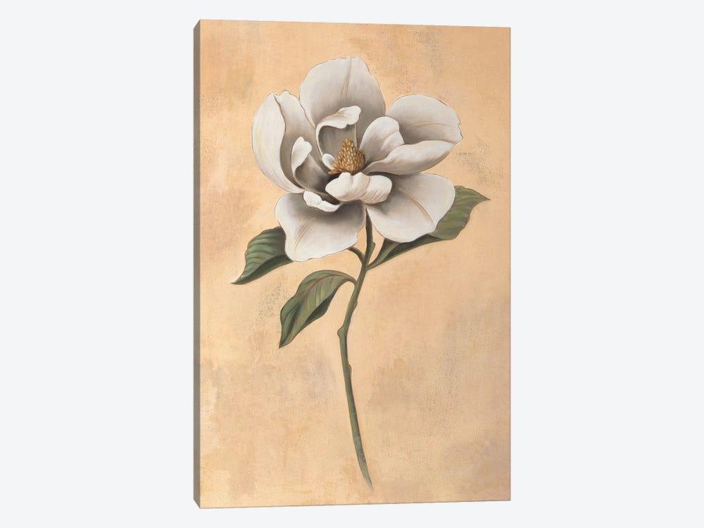 Magnolia by Virginia Huntington 1-piece Art Print