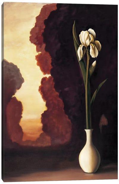 Floral Sunrise II Canvas Art Print