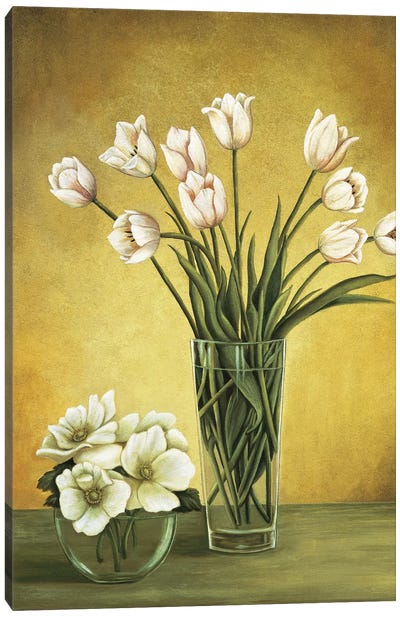 Tulipes blanches Canvas Art Print