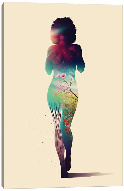 Stardust Canvas Print #VIC19