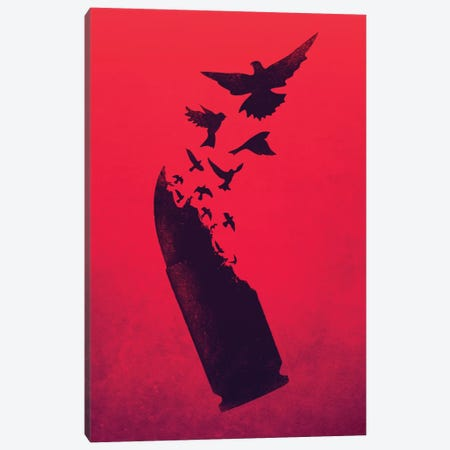 Bullet Birds Canvas Print #VIC3} by Victor Vercesi Canvas Art