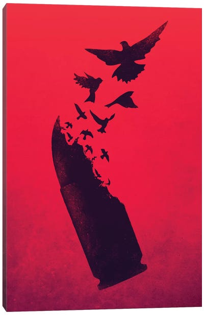 Bullet Birds Canvas Art Print