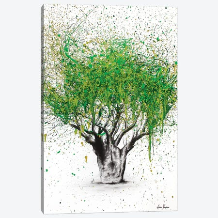 The Secret Boab Canvas Print #VIN111} by Ashvin Harrison Art Print