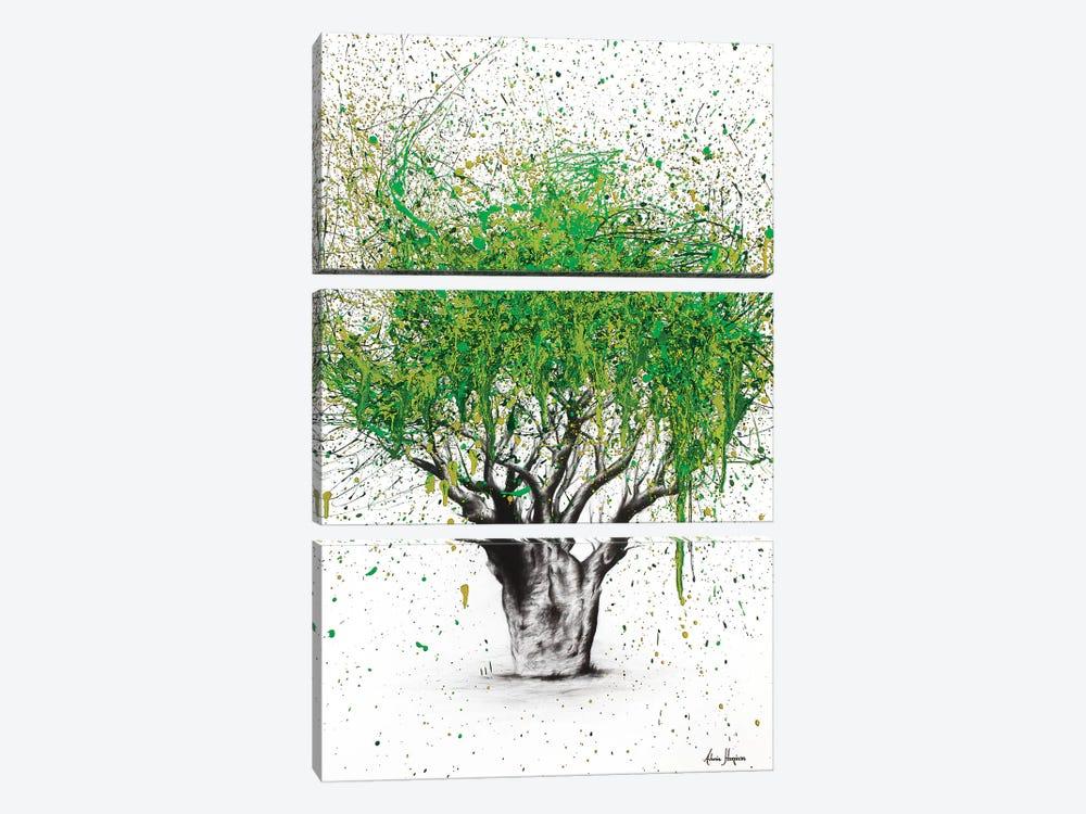 The Secret Boab by Ashvin Harrison 3-piece Canvas Print