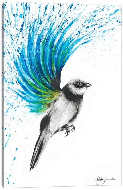 Turquoise Finch Canvas Art Print