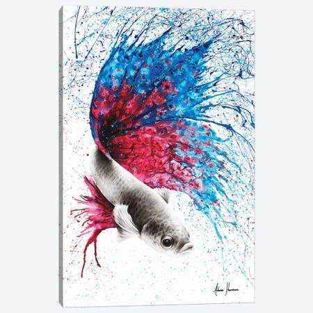 Water Stars Gourami Canvas Print #VIN123} by Ashvin Harrison Canvas Wall Art