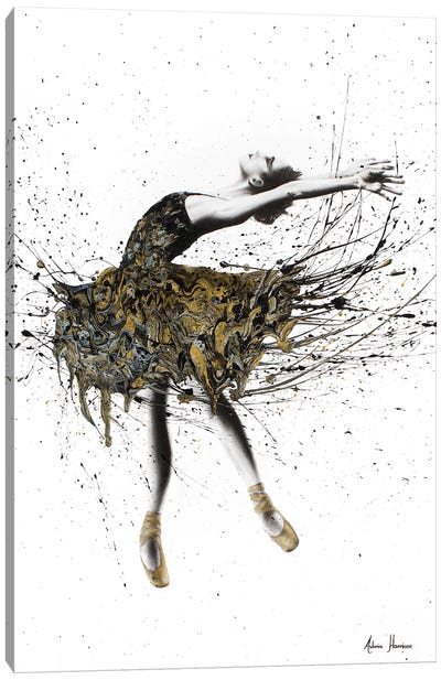 Black Swan Night Canvas Art Print